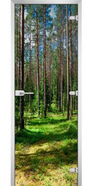 FOREST 03 с фотопечатью